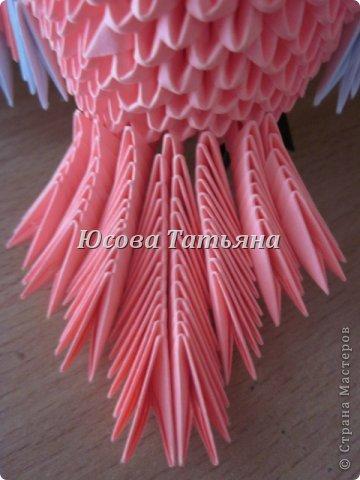 Розовый попугай фото 5