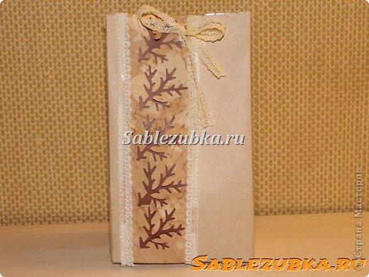 Мастер-класс Упаковка Новый год Аппликация Вырезание Подарочные пакеты из тетрапак-коробок Бумага Картон Кружево Ленты фото 26