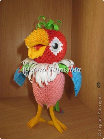 попугая Бумага фото 2