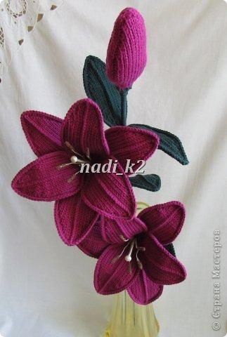 Мои лилии фото 4