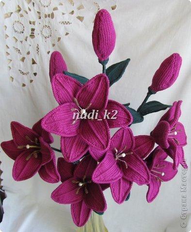 Мои лилии фото 8