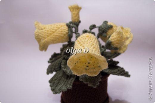 крючком Вязаные цветы в