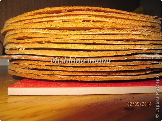 Кулинария Мастер-класс Начало учебного года Рецепт кулинарный Торт Рыжик -любимая классика   Продукты пищевые фото 7