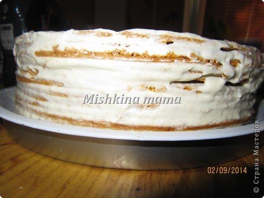 Кулинария Мастер-класс Начало учебного года Рецепт кулинарный Торт Рыжик -любимая классика   Продукты пищевые фото 13